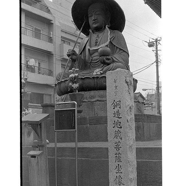 #真性寺 #instagram #instagramJapan #icu_japan #top_pointfview #team_jp_ #team_jp_モノクロ #igersjp #ig_japan #IGersJP #wu_japan #ig_nihon #wow_nihon #love_nippon #ig_nippon #love_nippon #ip_gallery #photoisland #Fukuoka  #ip_connect #ink361 #followme#写真好きな人と繋がりたい #ファインダー越しの私の世界 #sugamo #Neopan #フィルム #モノクロ