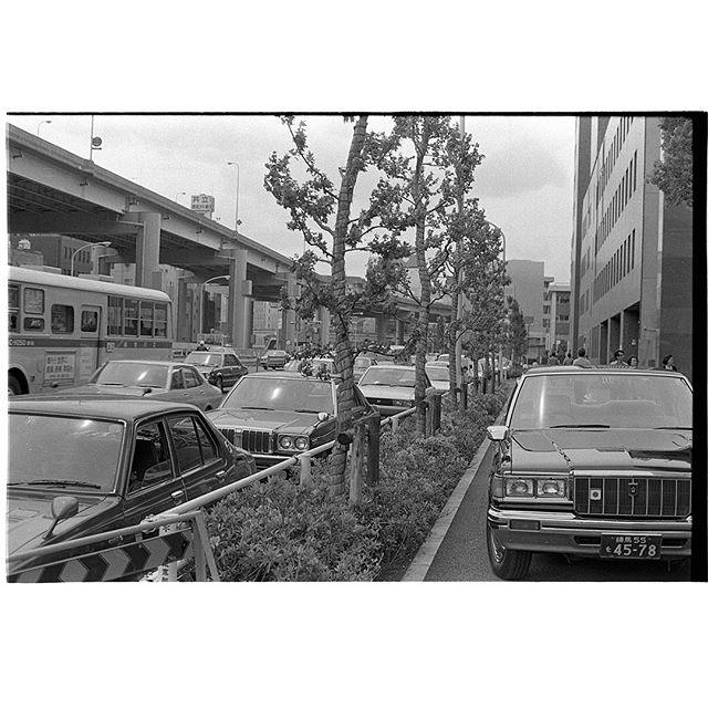 #飯田橋 #instagramers #instagramJapan #icu_japan #top_pointfview #team_jp_ #team_jp_モノクロ #ig_photooftheday #ig_japan #igersjp  #wu_japan #ig_nihon #Lovers_Nippon  #ig_nippon #love_nippon #ip_gallery #photoisland #Fukuoka  #ip_connect #tokyocameraclub #東京カメラ部 #ink361_asia #写真好きな人と繋がりたい #ファインダー越しの私の世界 #フィルム #モノクロ #neopan