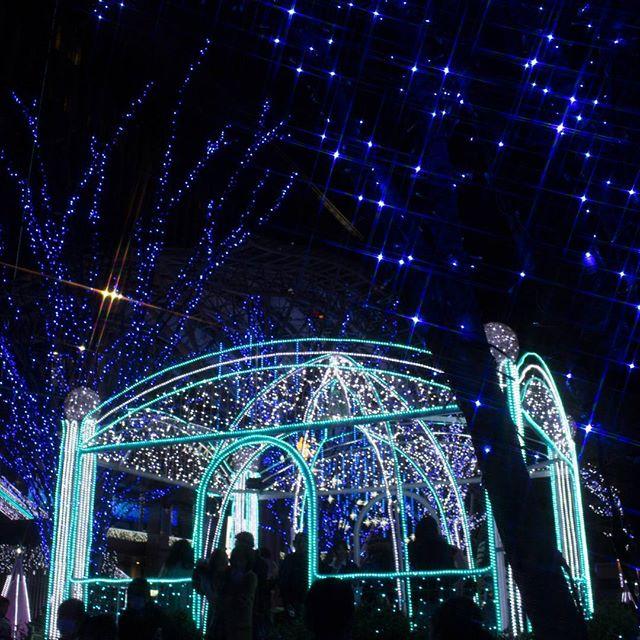 #イルミネーション #instagramers #instagramjapan #icu_japan #top_pointfview #team_jp_ #team_jp_西 #ig_photooftheday #ig_japan #igersjp  #wu_japan #ig_nihon #lovers_nippon  #ig_nippon #love_nippon #ip_gallery #photoisland #fukuoka  #ip_connect #tokyocameraclub #bestjapanpics#東京カメラ部 #ink361_asia #japan #olloclip#写真好きな人と繋がりたい#ファインダー越しの私の世界